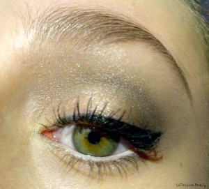 LOTD met Wet 'n Wild oogschaduwtrio Silent Treatment
