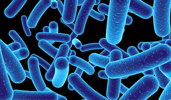 bacterie-e1
