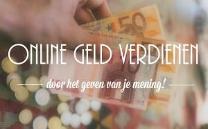 Online geld verdienen door het geven van je mening!